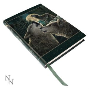 Journal~ Lisa Parker Blank Journal Diary The Wolf Song ~ By Folio Gothic Hippy B1033C4